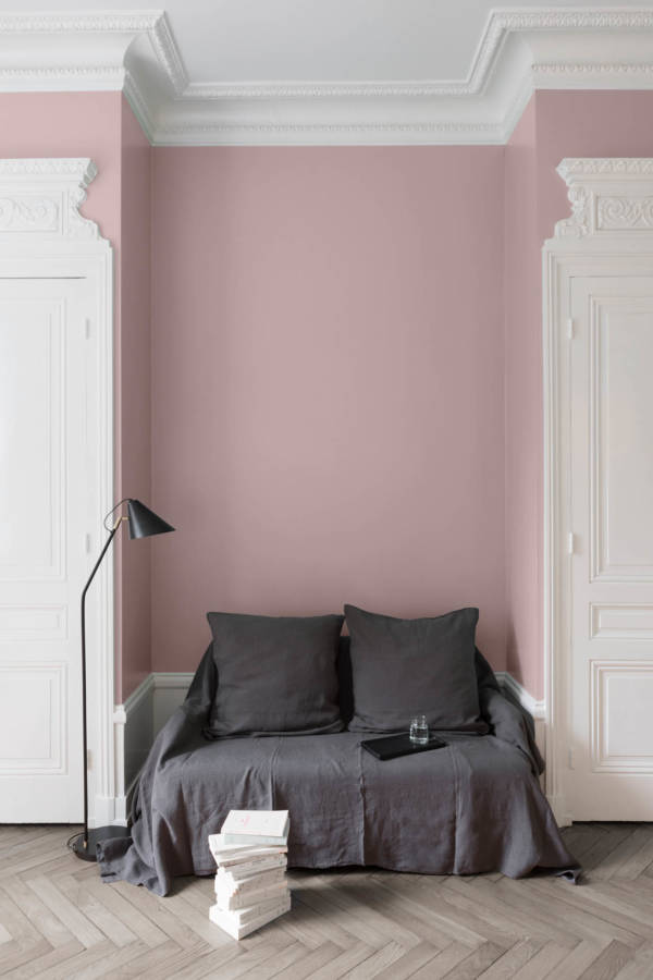 peinture-murale-Rose-Bagatelle